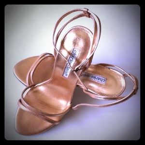 Charles David Shoes - Brand New✨= Two Strap Heels =