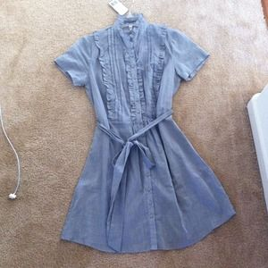 Dresses & Skirts - NEW Sheer button up dress