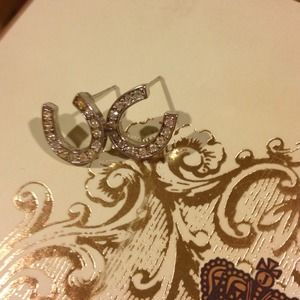 Jewelry - Shiny horseshoe silver tone earrings