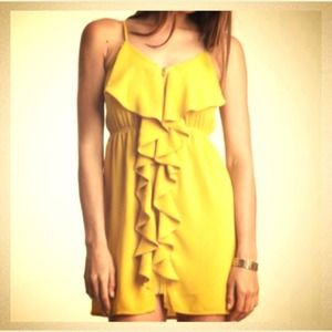 Pink Owl Yellow Ruffle/ Zip Front Dress