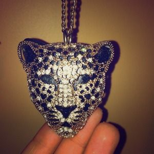 Jewelry - Tiger Diamond Necklace