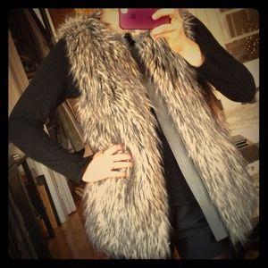 Joie Faux Fur Vest.