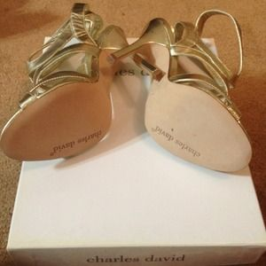 Charles David Shoes - Charles David Sandals♥REDUCED♥ 3