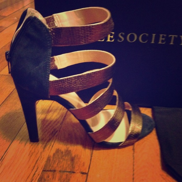 sole society Shoes - Brand new sole society sandals with bag!
