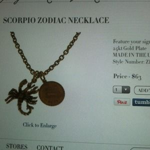 Elizabeth Cole Jewelry - Scorpio Zodiac Necklace 3