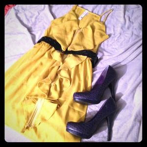 ✨NWOT✨Ruffle Zipper Dress