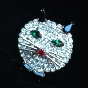 Jewelry - Super Sparkly Cat Pin!