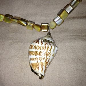 Jewelry - Seashell necklace from Hawaii