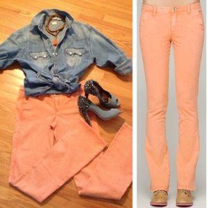 NEW C&C California Pants