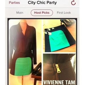 NEW Vivienne Tam Color Block Skirt
