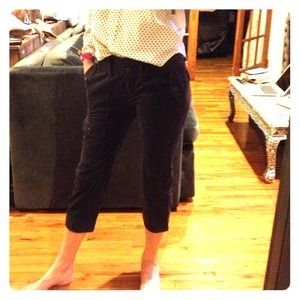 Anthropologie Pants - Anthro Velvet pinstripe cropped pants