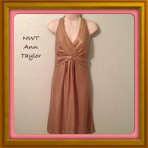 Ann Taylor Stunning Silk Golden Lux DressSZ12