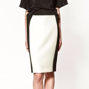 NWOT Zara Two-Toned Skirt