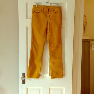 free shipping provide plenty of purchase authentic LOFT mustard yellow modern straight corduroy pants