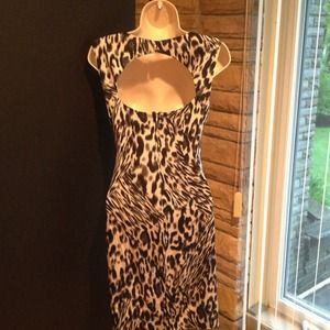Cache Dresses - Reduced!!! Cache dress, animal print