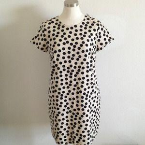 J. Crew Dresses - JCrew Polka Dot Dress