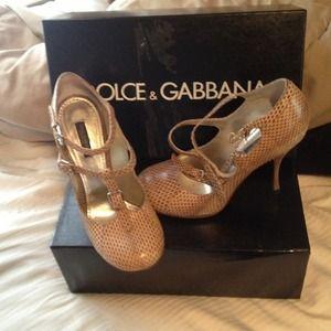 Dolce & Gabbana snake skin pumps