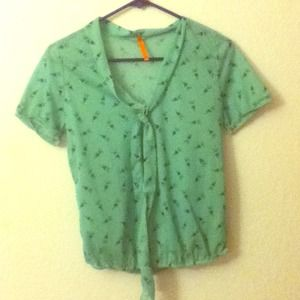 Vintage green sheer top