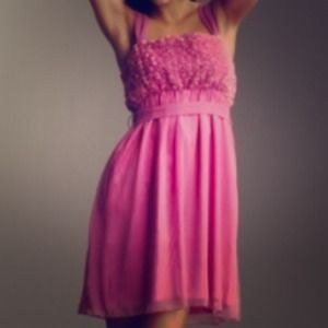 Dresses & Skirts - BNWT Rose appliqué dress.