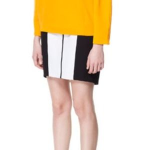 HOSTS PICK NWOT two-toned pencil skirt