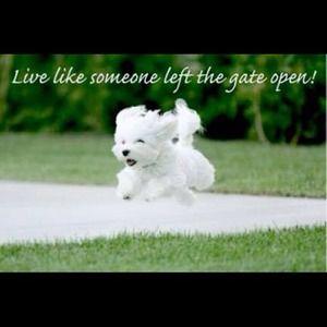 Live LIFE everyday!!!