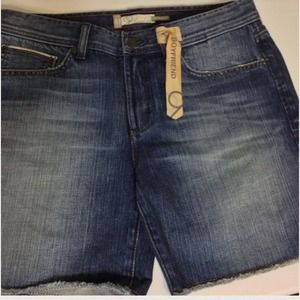 REDUCED Anthropologie Level 99 Boyfriend Shorts