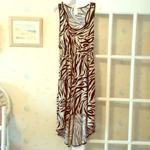 Dresses & Skirts - Nwt zebra hi low dress