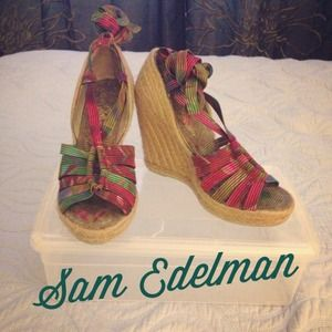 ReducedSam Edelman Wedge
