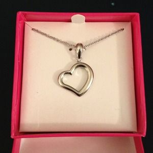 Stainless steel heart pedant with chain