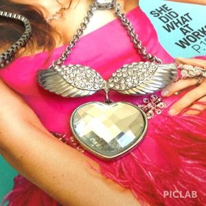 Jewelry - The Wing Dazzle Sweater Necklace