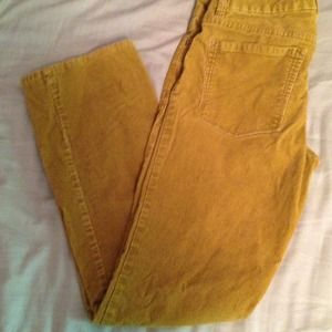 J. Crew olive green bootcut cords