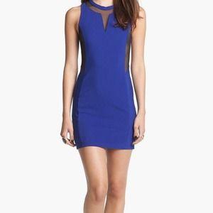 Mesh Body-Con Dress (ROYAL BLUE)