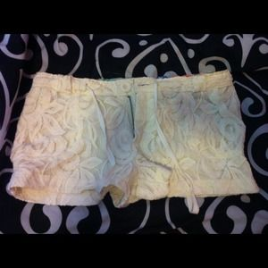 Shipley & Halmos Pants - Now $11! 💥NWOT💥Creme Lace Shorts!