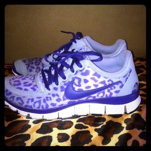 cheetah free runs