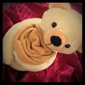 Other - Teddy bear with blankie