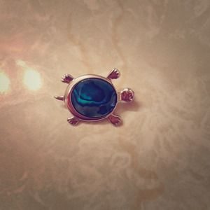 Adorable turtle pin!