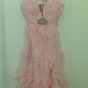 Beautiful pink long dress with feathers.