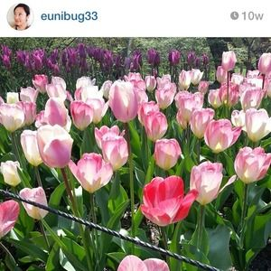 📷 IG: @eunibug33 ✨