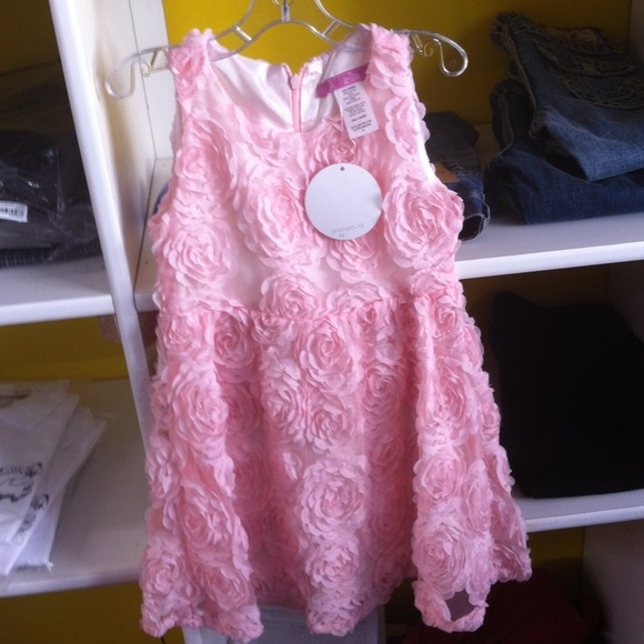 51% off Le Pink Dresses & Skirts - Le Pink Rose Dress from ...
