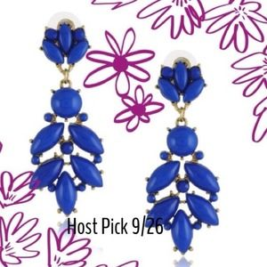 Host PickNWOT Cobalt Blue Statement Earrings