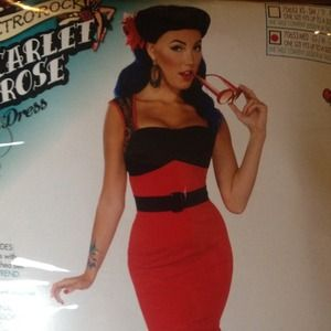 Dresses & Skirts - REDUCED!!! Pin Up Costume