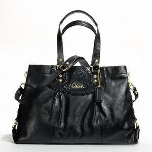 Coach Ashley Leather Carryall