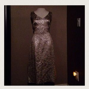 Metallic dress set!  retro look! 2 PC holiday!