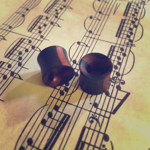 Jewelry - Black & Brown Wooden Plugs NWOT