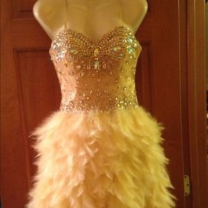 Bedazzled Feather Corset Short Dress