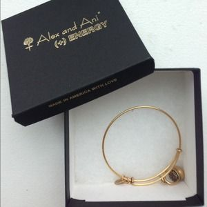 Alex and Ani Pot of Gold Lucky Charm Bracelet