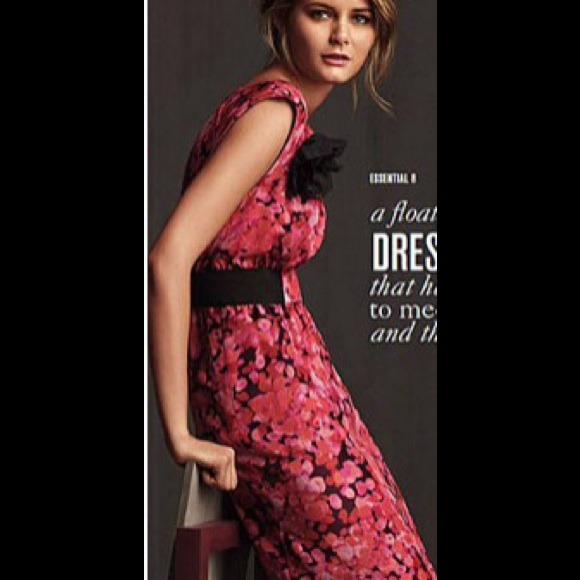 Loft Dresses Ann Taylor Red Floral Fall Dress Size 4