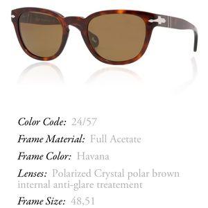 Persol Accessories - Persol Tortoise Brown Sunglasses