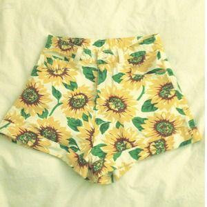 American Apparel insp. Sunflower Shorts