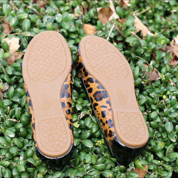 Coach Shoes - ⚡️Sale⚡️ Brand new Coach leopard print flats 3